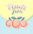 Retro peach jam vector image