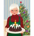 Grandmother and Christmas cake vector image vector image