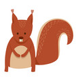 cute squirrel cartoon animal character vector image