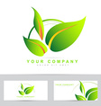 Ecology or bio leafs logo vector image