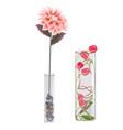 Flower decorative glass vase interior decoration vector image