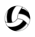 volleyball ball icon image vector image