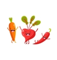 Carrot Beetroot And Pepper Cartoon Friends vector image