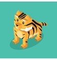 Isometric 3d Tiger Animal Isolated vector image vector image