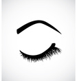 Eyelashes vector image