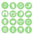 human organs icons set vector image