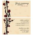 sakura cherry business card vector image