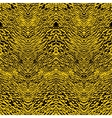 Animal pattern inspired by African animals skin vector image