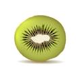 Organic kiwi isolated on white vector image