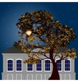 Autumn moonlight night in the city vector image