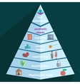 Maslow Pyramid icon vector image