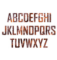 Rusted big letters vector image vector image