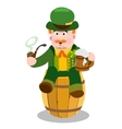 Man in the Irish pub St Patrick s Day vector image
