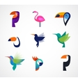 Tropical birds - set of icons vector image