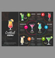 flat cocktail menu design vector image