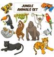Cartoon jungle animals set vector image