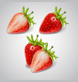 whole and cut berries of red ripe strawberries vector image
