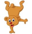 Cute brown bear cartoon vector image