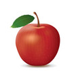 realistic red apple on white background vector image