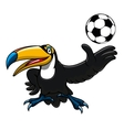 Cartoon toucan bird player with ball vector image