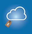 cloud service pricing dollar price tag money vector image
