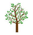 colorful tree with leafy branches vector image