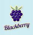 Retro blackberry vector image