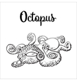 Drawing of octopus isolated on white background vector image