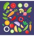 Vegetable Salad Ingredients Collection vector image