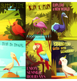 Exotic Birds 6 Posters composition Poster vector image