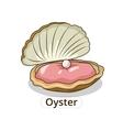 Oyster underwater animal cartoon vector image