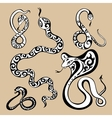Year snakes symbol vector image