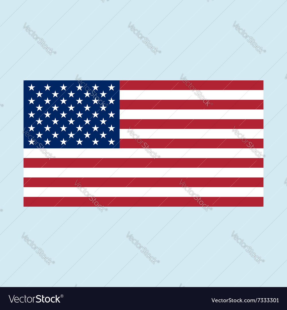 Usa flag color vector