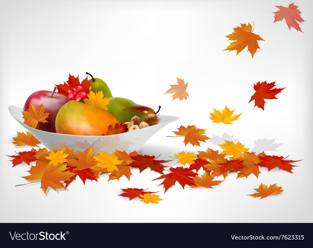 Fruits and autumn leaves on a plate vector