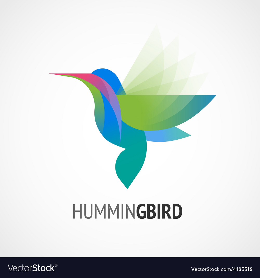 Tropical bird  humming icon vector