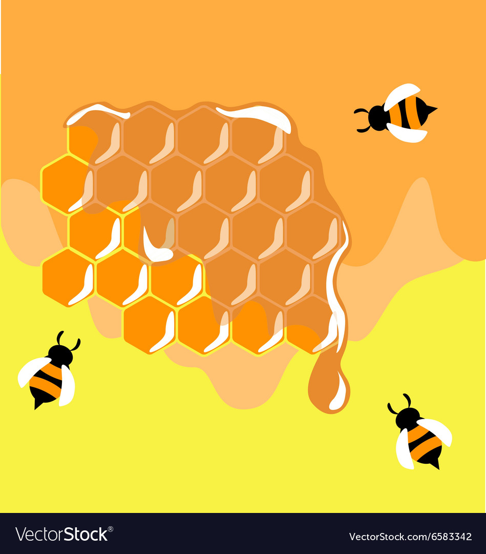 Three funny bees on honeycells vector