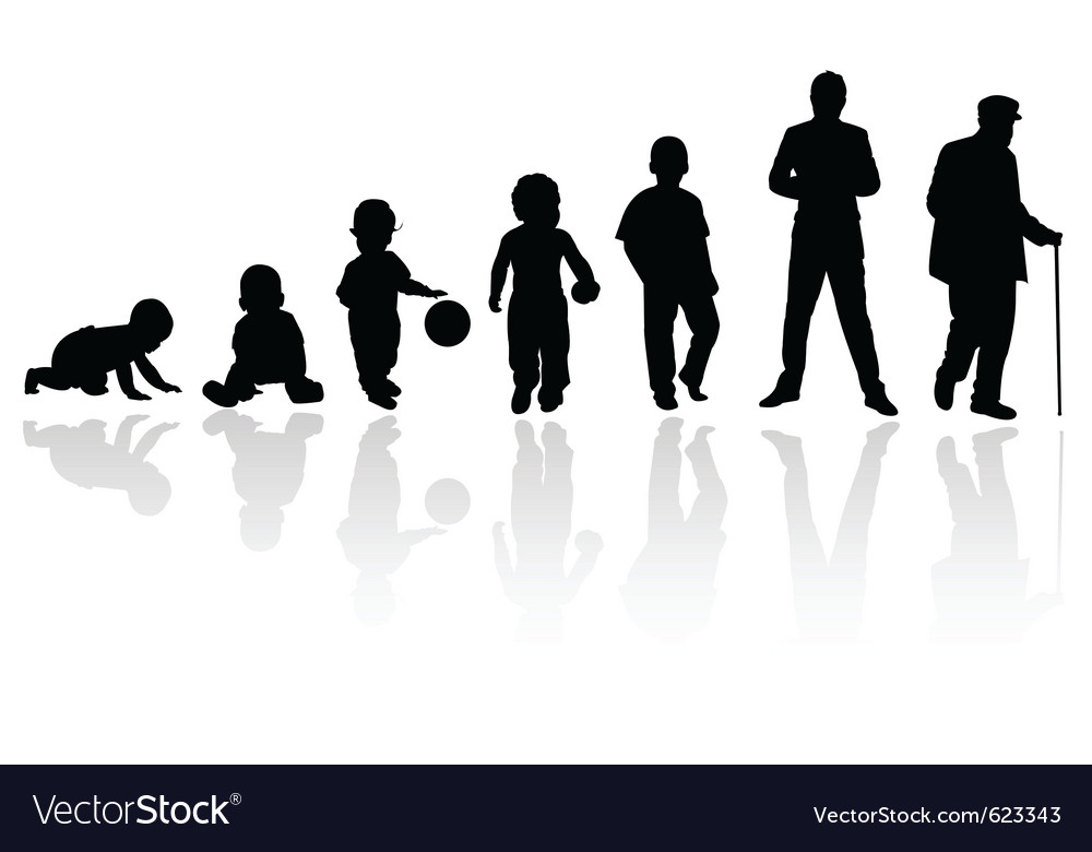 Age evolution silhouettes vector