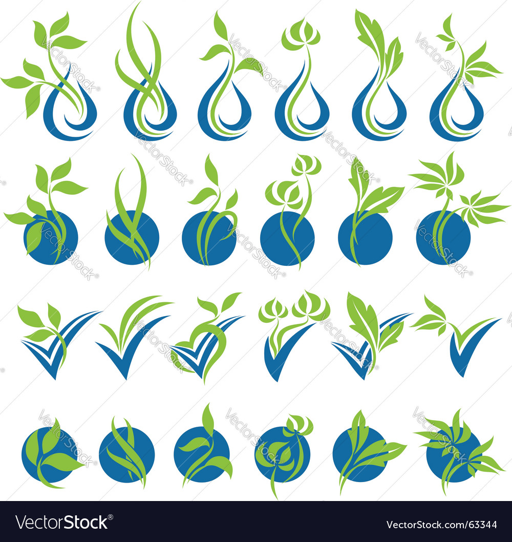 Drops and leaves vector