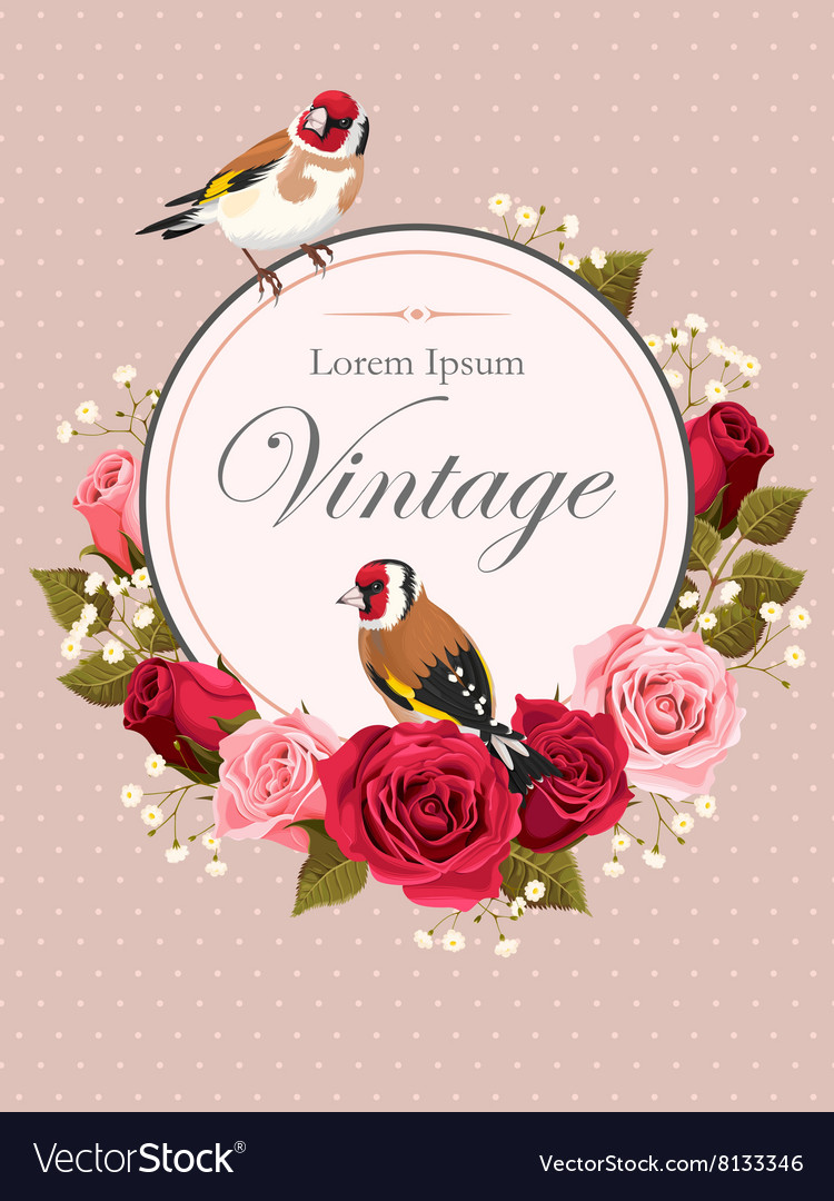 Vintage card with roses vector
