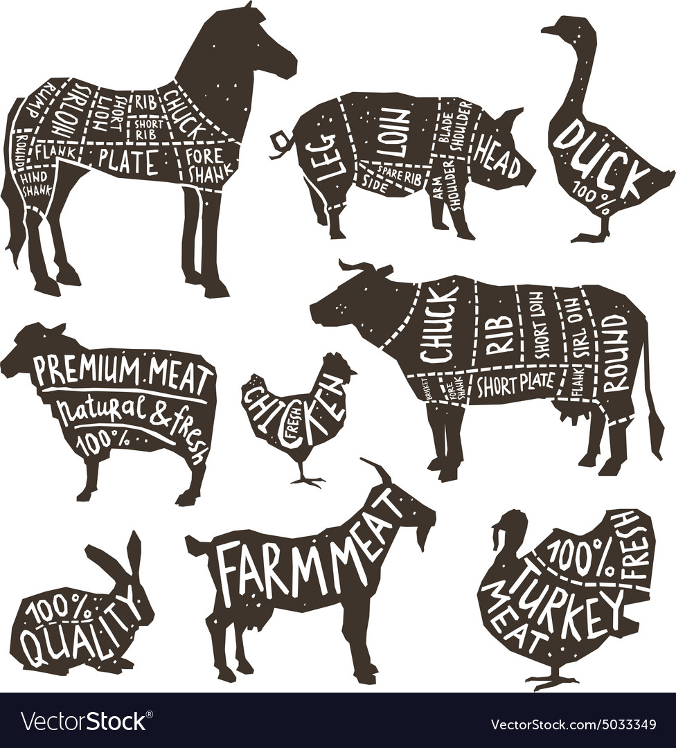 Farm animals silhouette typographics vector