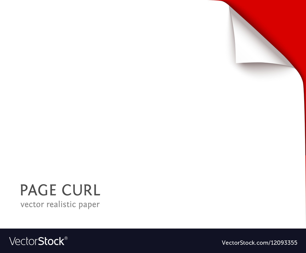 Sheet of paper with curl corner vector