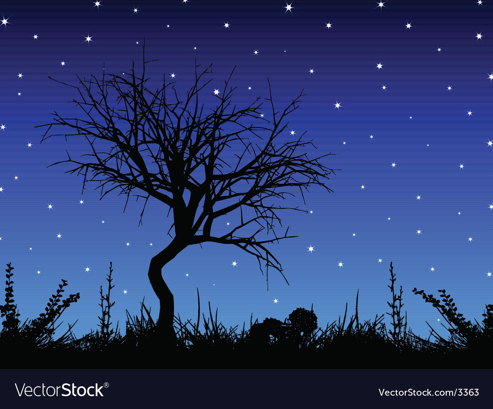 Tree against starry sky vector