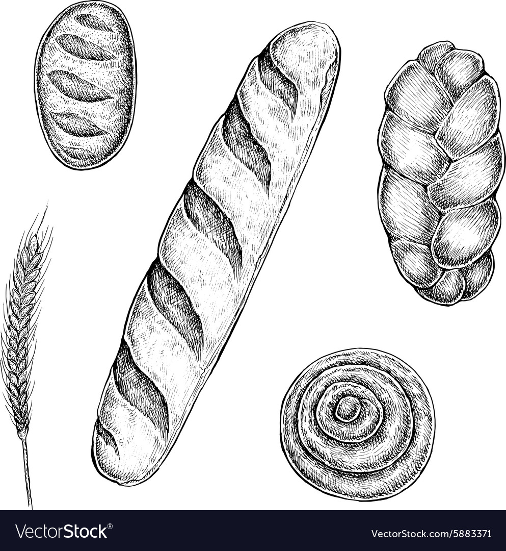 Collection of hand drawn ink bakery sketches vector