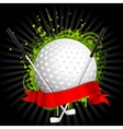 Golf kit vector image