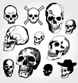 doodled skulls vector image