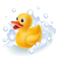 Rubber duck in foam vector image