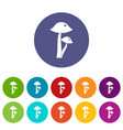 honey fungus icons set flat vector image