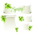 Manuscript template with green leaves vector image