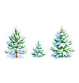little snow-covered pine tree and two fir trees vector image