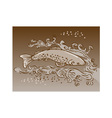 speckled trout vector image vector image